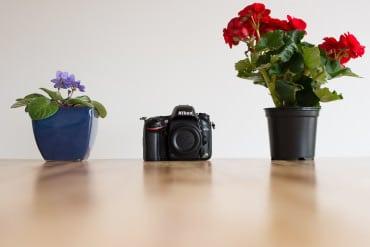 Shotkit_Nikon_D610_Review-8 copy