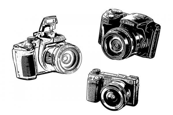 Best cameras under 500 dollars
