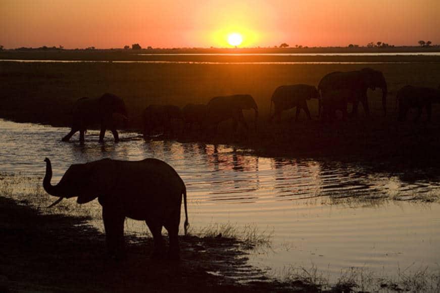 6Monatige Reise mit Oldtimer durch Afrika