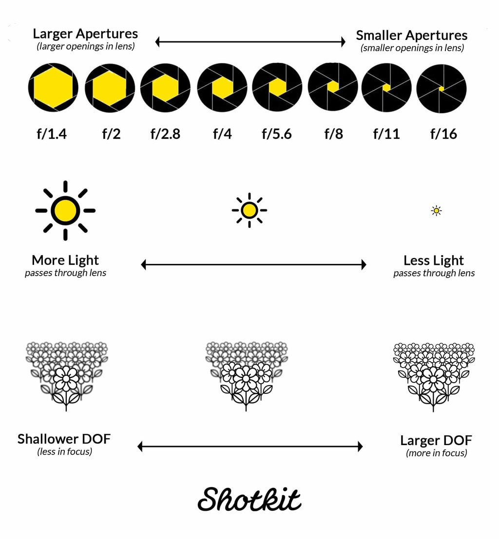 effect of aperture on light and focus by shotkit