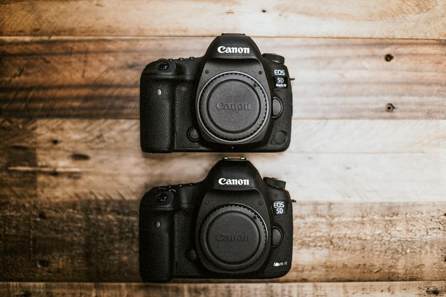 canon eos 5d mark 4 - canon ef lenses. Great in low light. Motion jpeg iso range with 61 af points and dual pixel 4k video