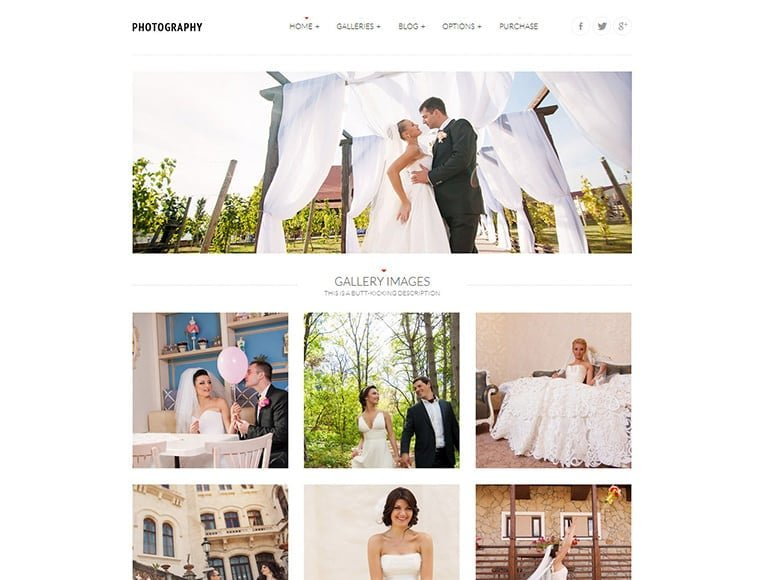 wordpress themes for photographers