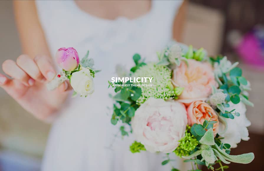 simple wordpress theme for photography
