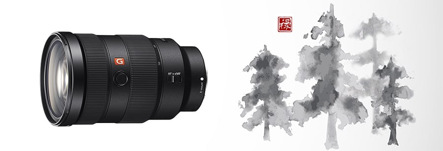 review of FE 24-70mm F2.8 GM w/ 82mm filter thread for full-frame