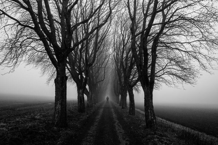 Alan Thomas Duncan Wilkie_Shotkit-3