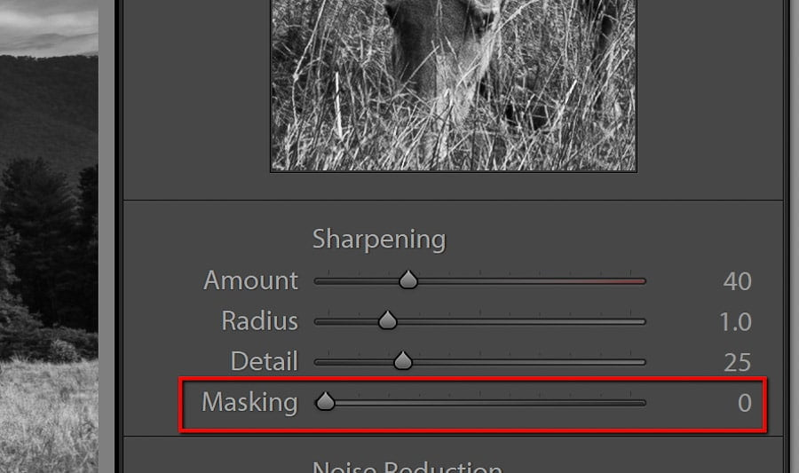 5_tips_for_Lightroom_Classic_CC-12