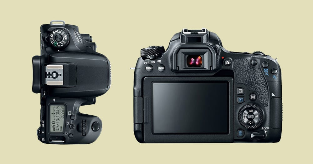 Best Entry Level DSLR Cameras of 2019 | DSLR Reviews