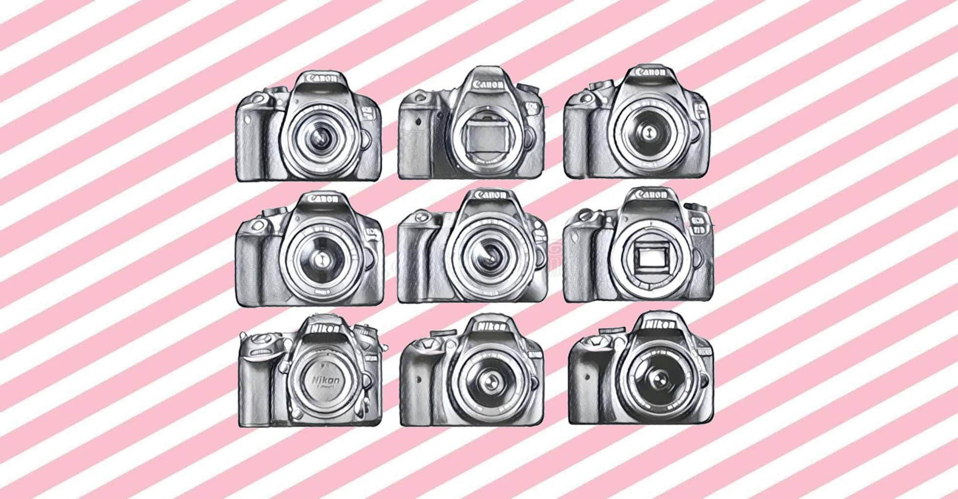 best entry level dslr cameras