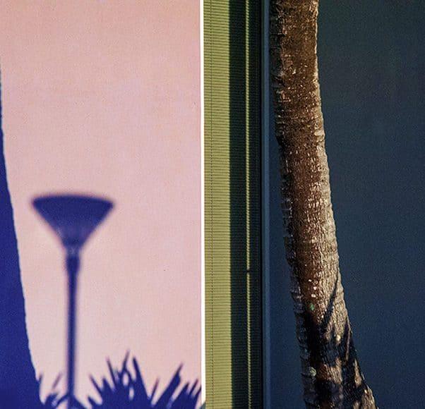 Brian_Rope_Shotkit_Nature's Shadows