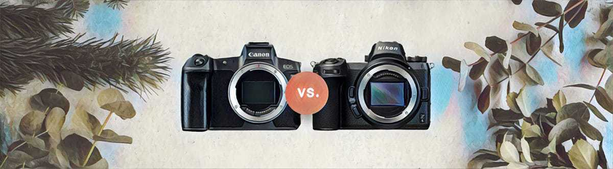 comparison of Canon EOS R vs Nikon Z6