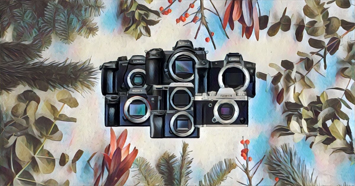 best mirrorless cameras of 2019 Shotkit article title graphic