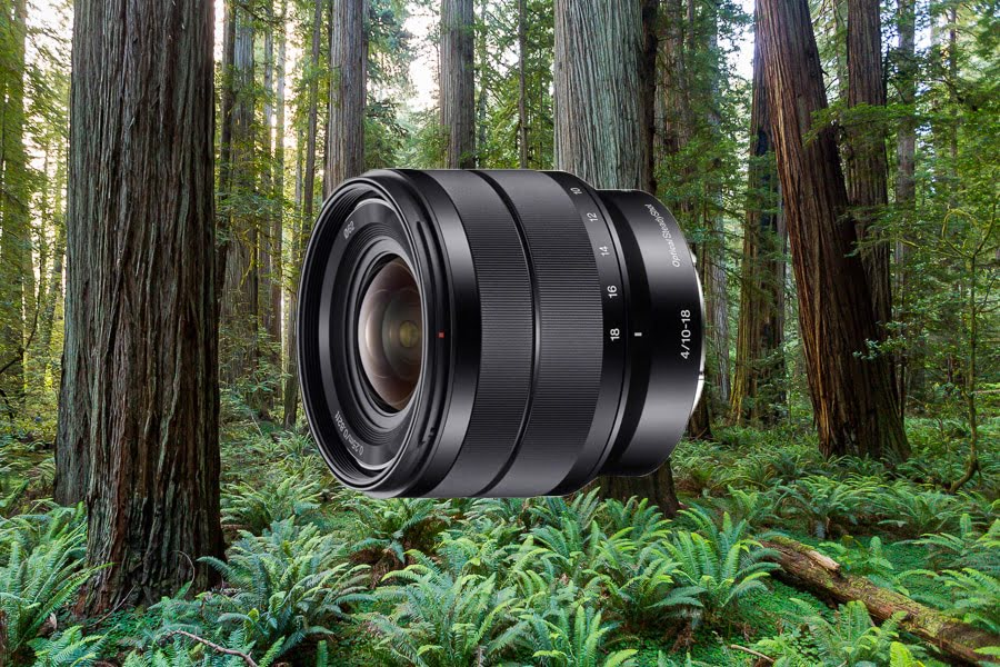 Best Lenses for Sony a6500 - Sony 10-18mm f4