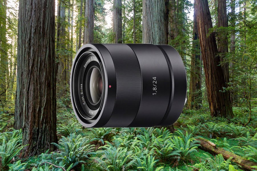 Best Lenses for Sony a6500 - Sony 24mm f1.4
