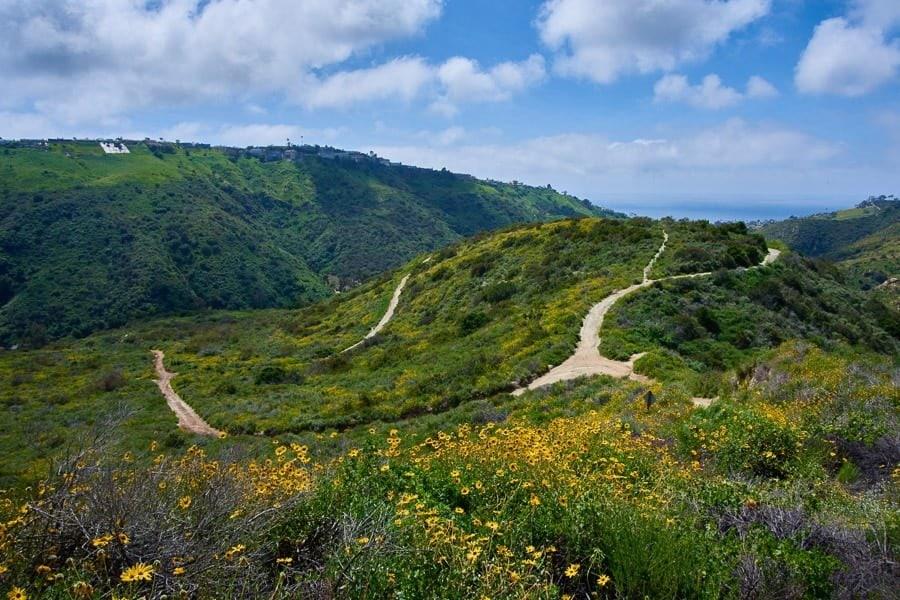 Nikon 10-20mm DX Landscape Photography Lens DX