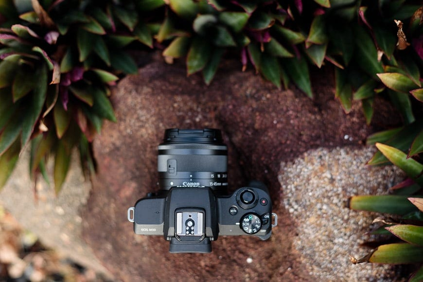 affordable mirrorless cameras like the canon eos m50 are rare! Mirrorless is the future and shooting raw on this eos m50 is a breeze