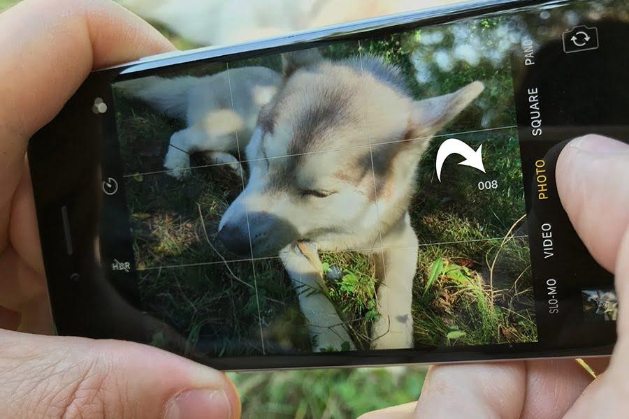 Iphone_photography_tips_burst