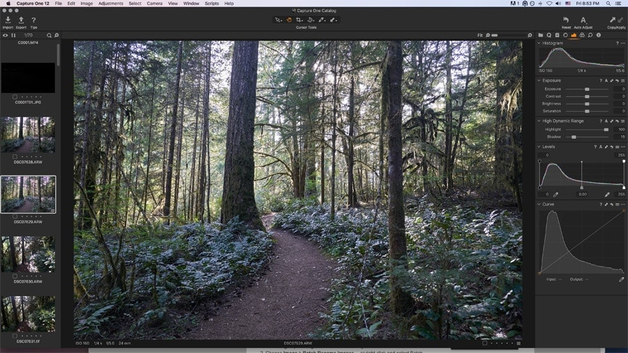 Capture One for Sony users with advanced image management (free for capture one pro users). Worldclass image editing photo editor. Better than affinity photo. Different to Photoshop.
