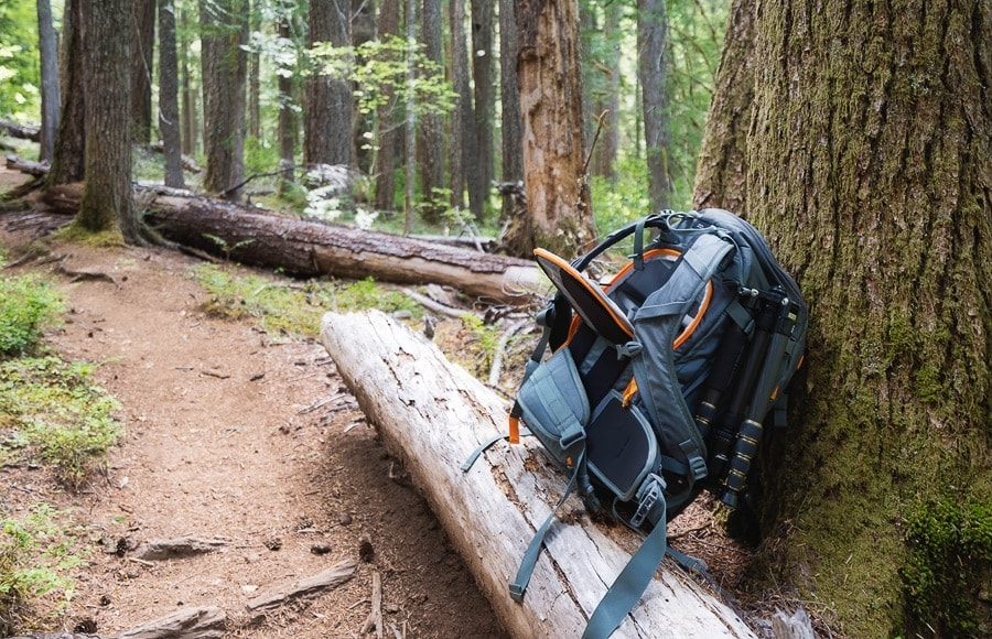 Lower Whistler hiking backpack