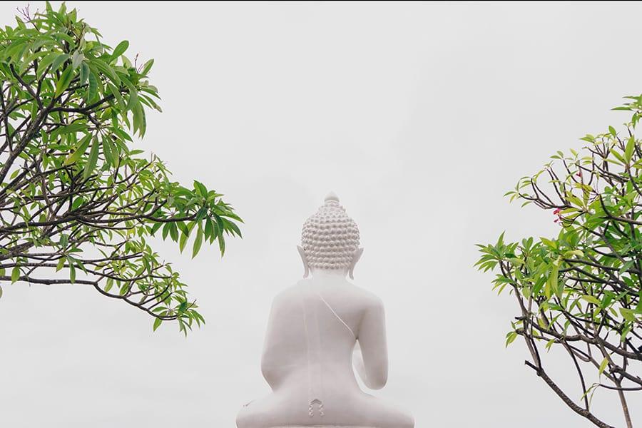 example of minimalistic photography