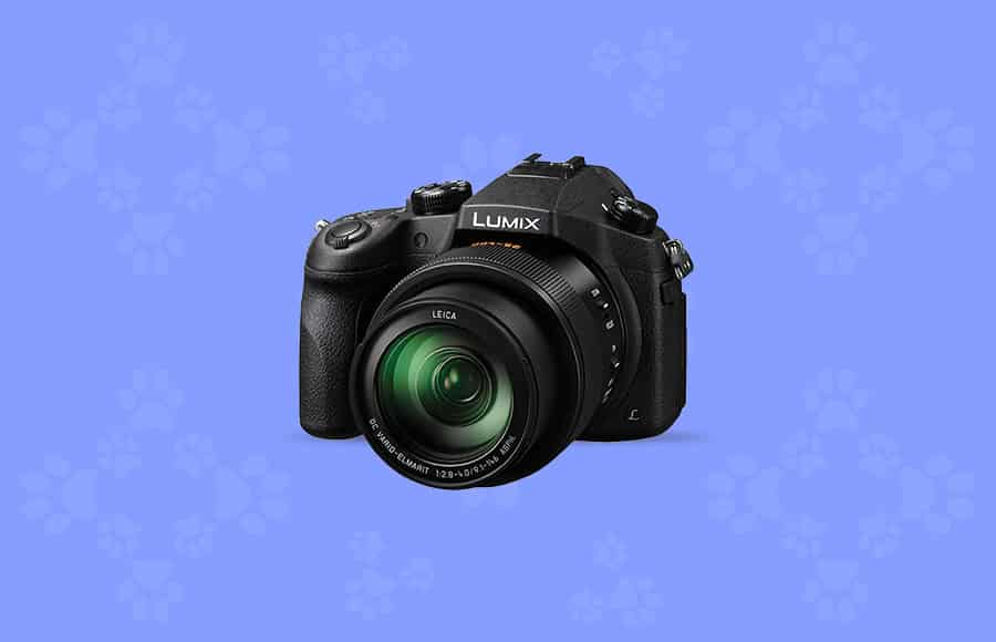 best camera for wildlife photography with image stabilization - Panasonic camera body plus lens