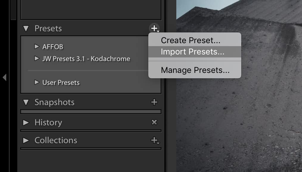 import from your user presets folder in the lightroom develop module