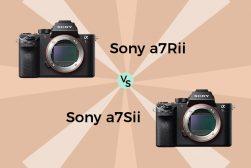 Sony A7S II vs A7R II