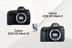 canon 6d mark ii vs 5d mark iv