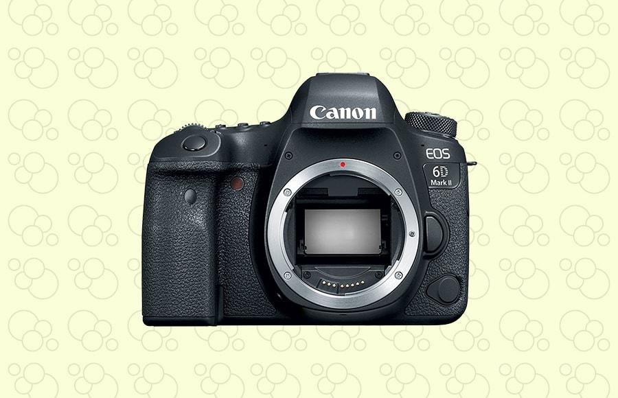 canon EOS 6D mark II - high resolution canon camera