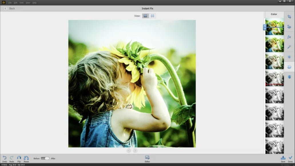 lightroom vs photoshop elements
