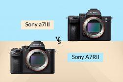 sony a7rii vs a7iii
