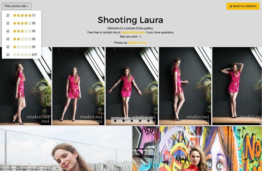 Evlaa photos gallery lightroom plug in