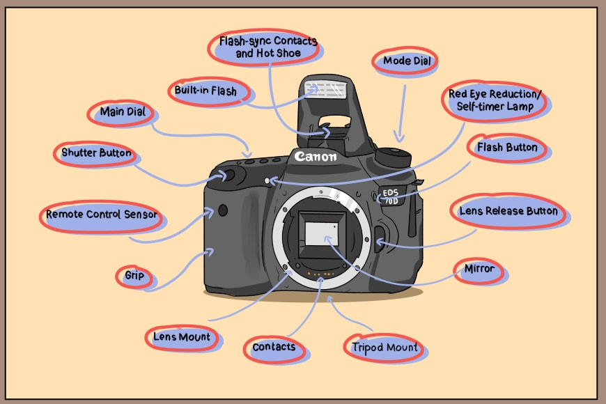 Digital camera parts and features
