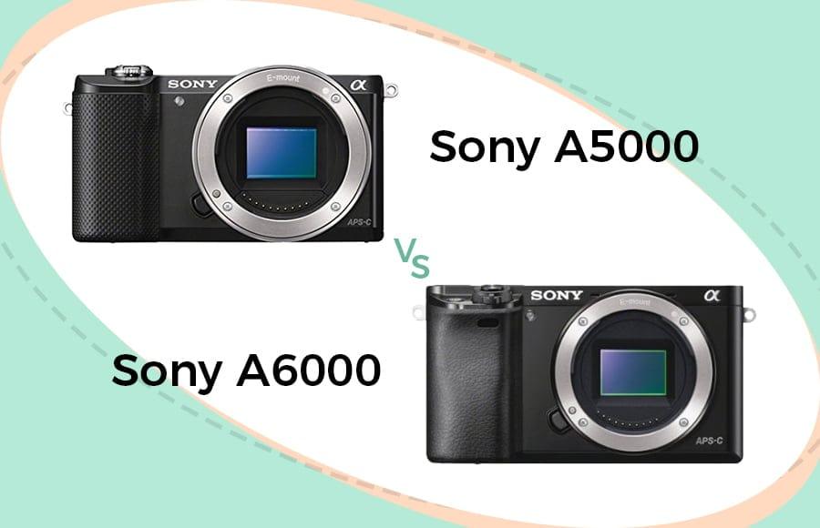 sony a5000 vs a6000 comparison