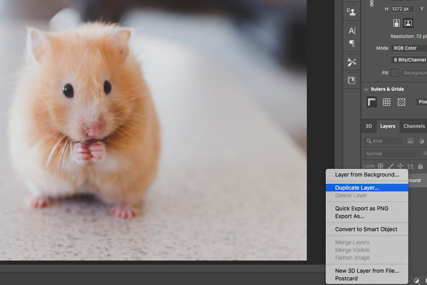 Sharpening images in Photoshop - To use the smart sharpen filter in Photoshop for image sharpening, first duplicate your layer.