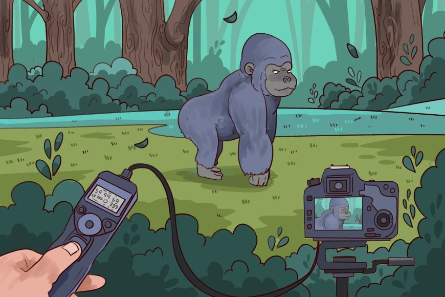 remote-shutter-release-illustration