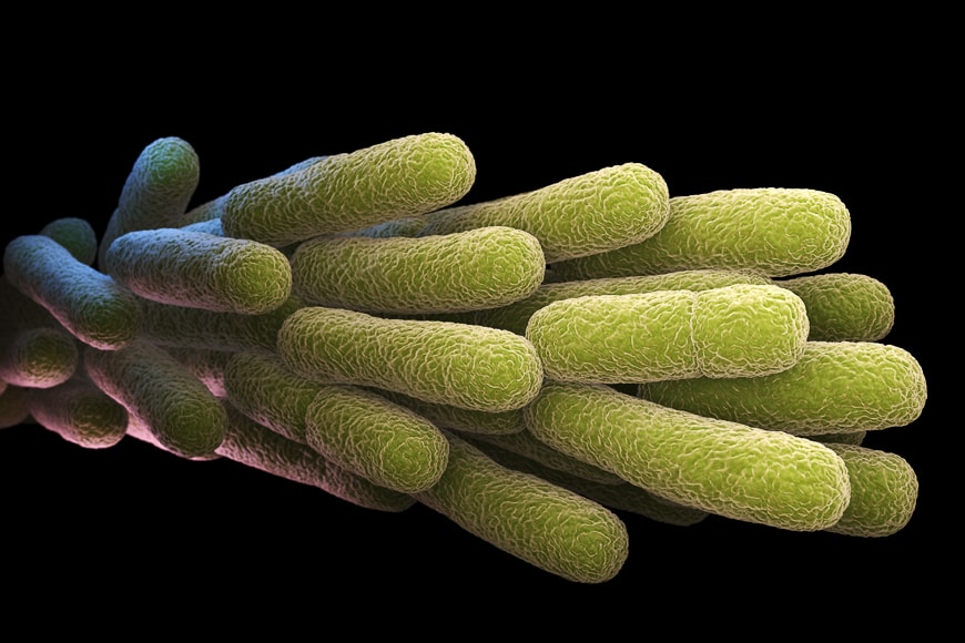 Scientific image of microscopic matter.