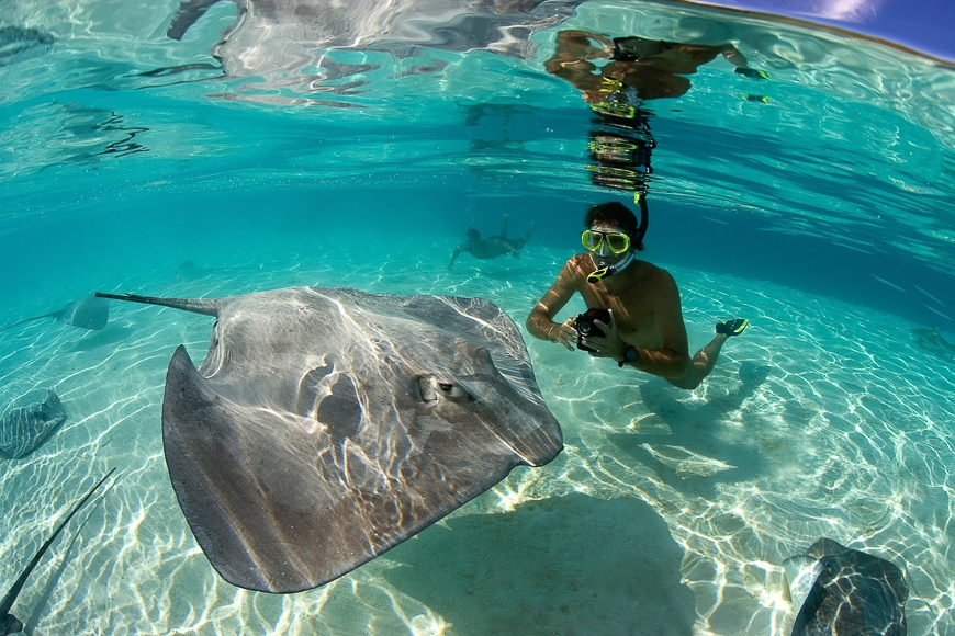 Underwater photo of ray with underwater photog in snorkelling gear with underwater camera. A fisheye lens can capture more of the scene.