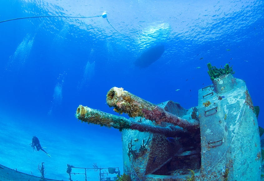 Underwater photography guide - photos by underwater photographers need correct white balance and a good source of light.