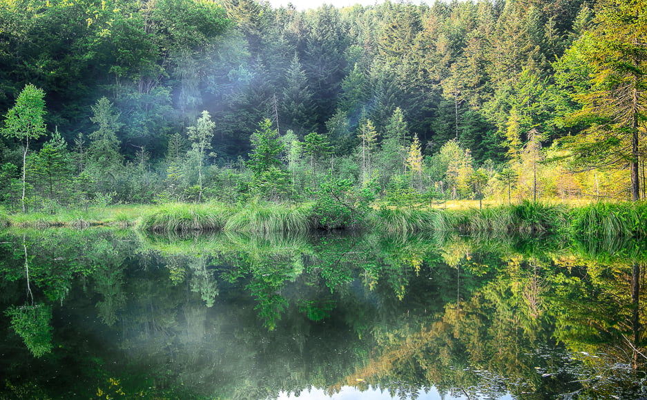 filters provide opportunities to capture colors in misty environment
