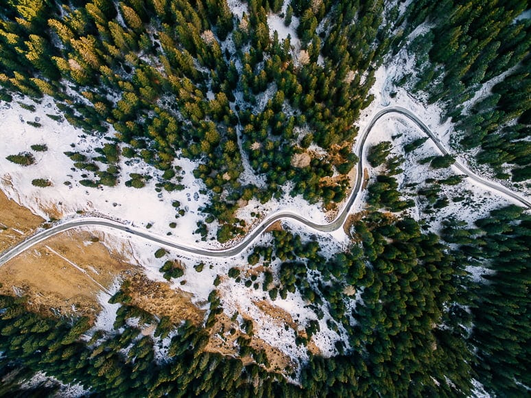 Drone shot of road snaking through pines.