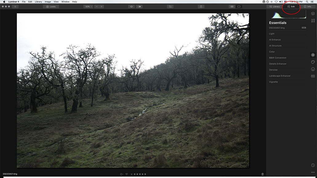 video tutorial screengrab from luminar
