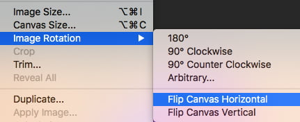 Select Image Rotation and then choose to flip horizontal or vertical.