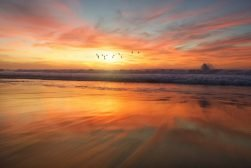 sunrise-photography-featured