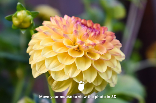 Facebook 3D photography function allows you to post 3D pictures.