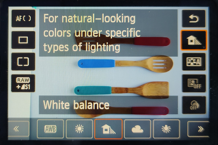 Setting the image color balance depends on the light source you use in your product photography.