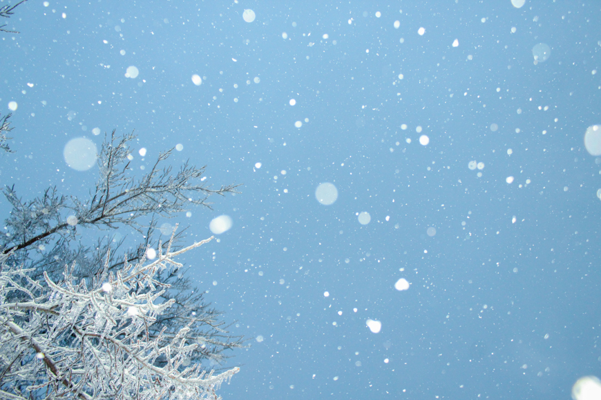 Photography - snowflakes falling