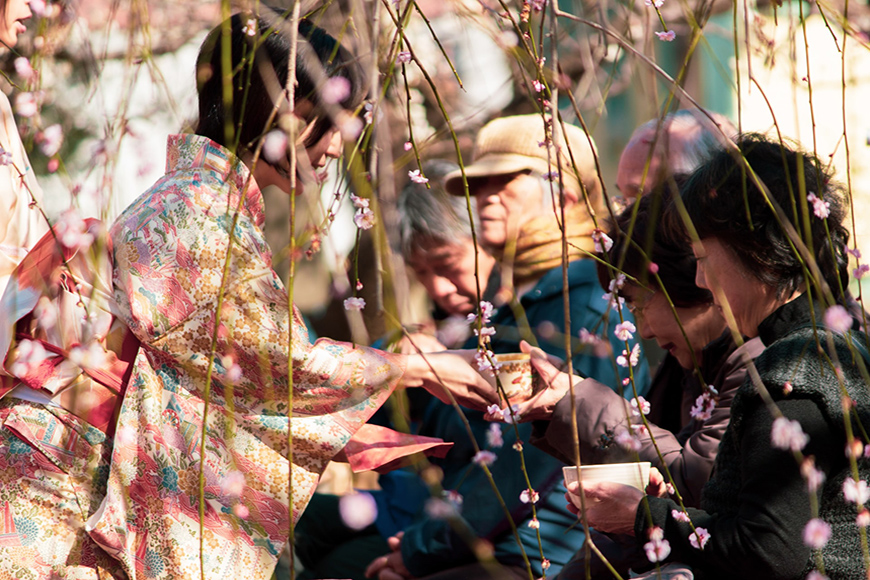 Spring photography is popular at seasonal events