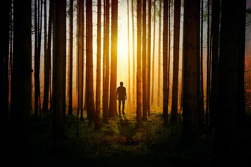 man in woods backlit