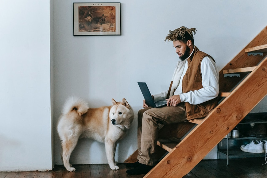 Man on laptop with dog