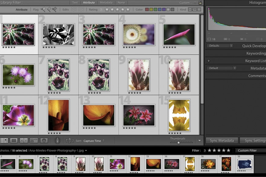 Choose your images in Photoshop